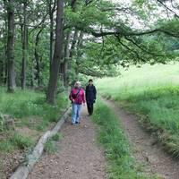 Ein Stück Freiheit: Wanderweg für Sehbehinderte im Harz © IMG, Miriam Fuchs.jpg