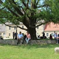 Gäste im Hof von Schloss Goseck